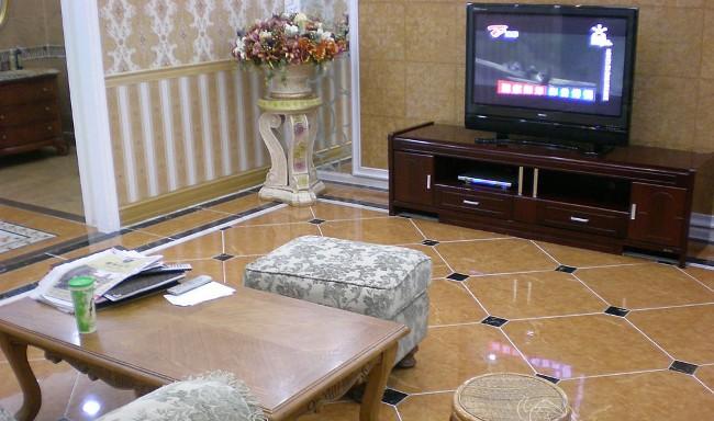 济阳县专业瓷砖美缝——客厅施工后的效果